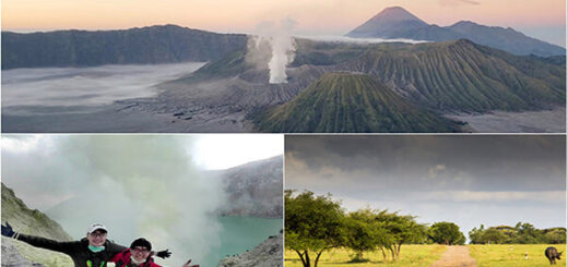 Mount Bromo Ijen Baluran Tour 4 days