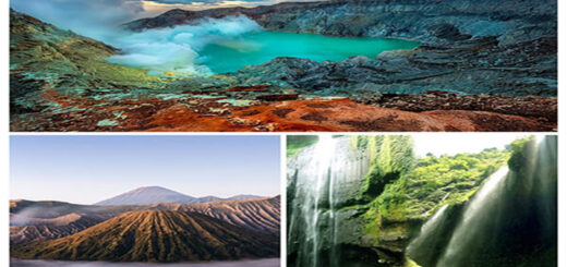 Ijen Crater, Mt Bromo, Waterfall trip 3 days